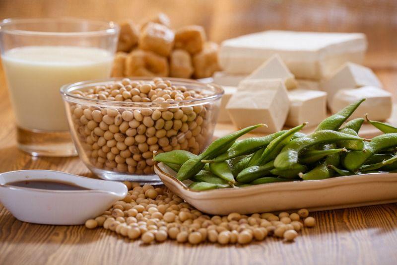 Estrogen Rich Food